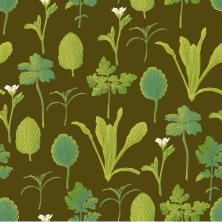 26752 | herbs
