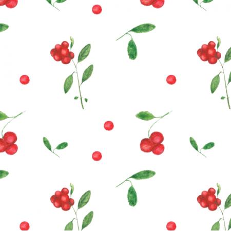 Fabric 26880 | Borówki leśne