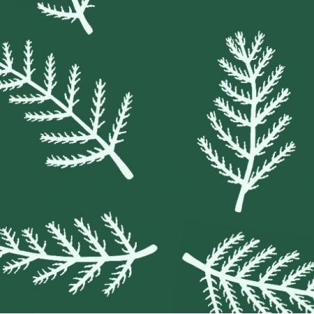 Fabric 27538 | Paprotki morskie