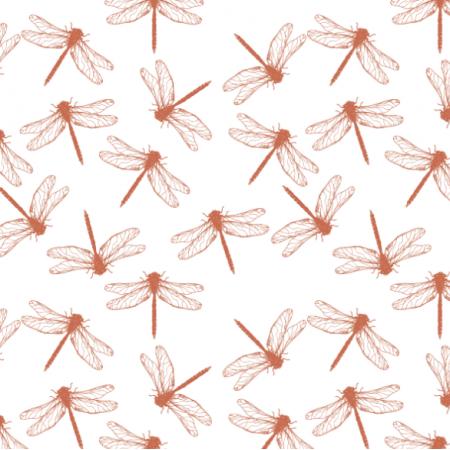 27742 | dragonfly