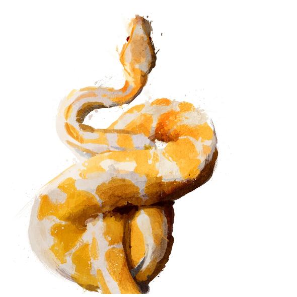 472 | snake