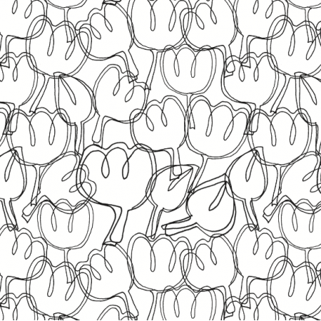 3727 | Tulips