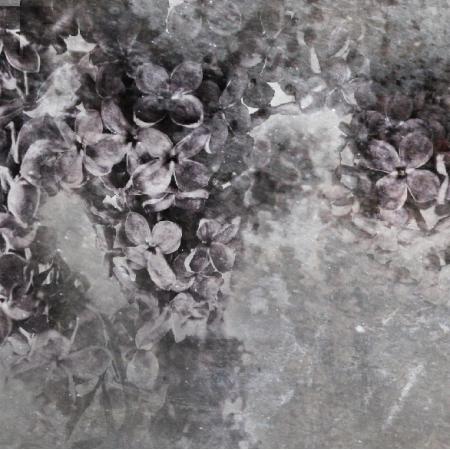 Tkanina 3910 | Lilac Flowers
