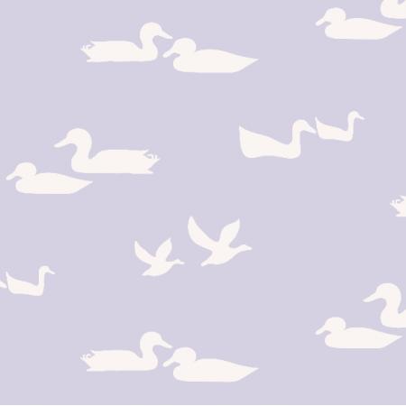 3975 | ducks