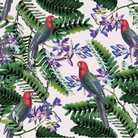 4507 | Papugi w tropikach0