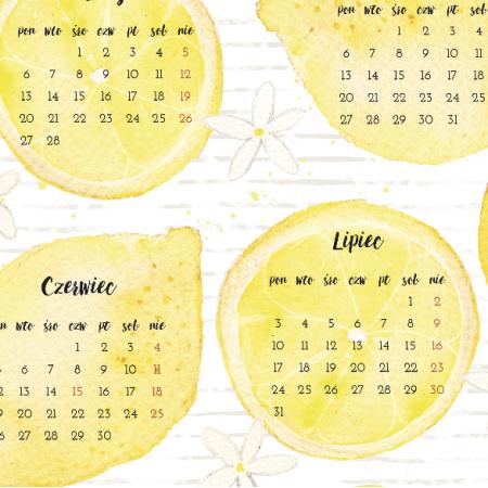 5707   cytrynowy kalendarz 2017