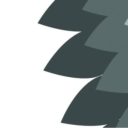 5885 | Strój karnawałowy sikorka