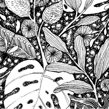 6007 | dżungla