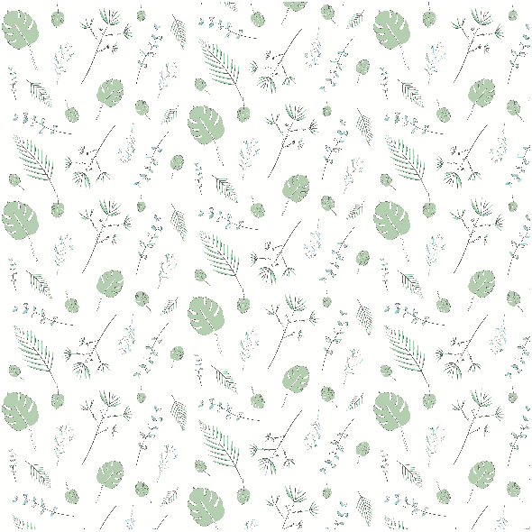 6629 | plants