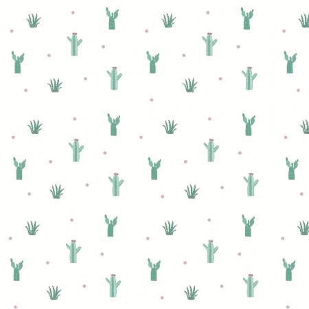 6798 | kaktusy