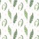 Tkanina 7334 | fern watercolor