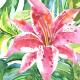 Tkanina 7591 | Jungle pillow3