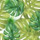 Fabric 7592 | Jungle Pillow4
