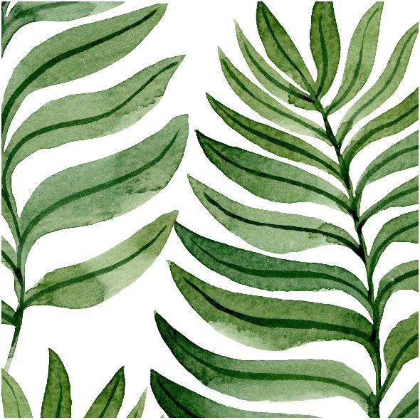 Tkanina 7607 | zieleń 1a