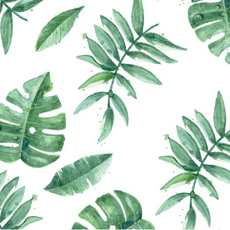 7985 | palmy wodne zielone