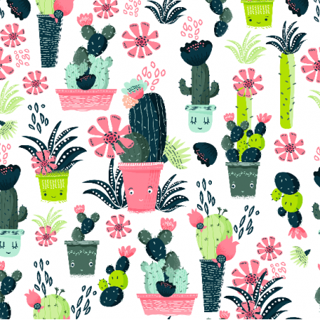 8104 | Kaktusy