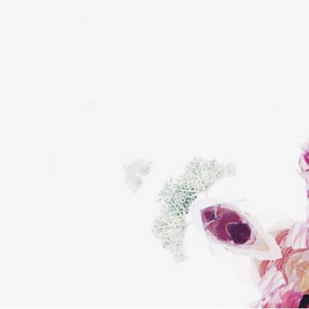 Fabric 8154 | FLOWERS 3