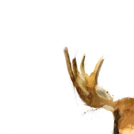Tkanina 1012   moose
