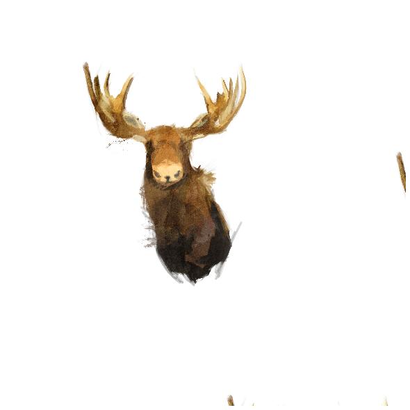 1012 | moose