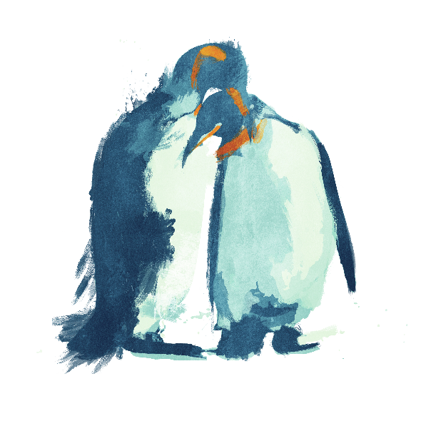 1031 | penguins_kupon