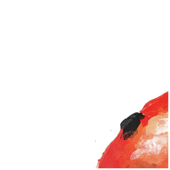 Tkanina 1054 | Ladybird_kupon