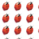 1054 | Ladybird_kupon
