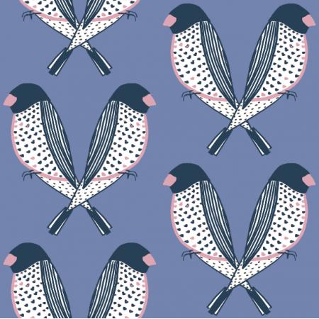 9237 | Papużki nierozłączki niebieskie