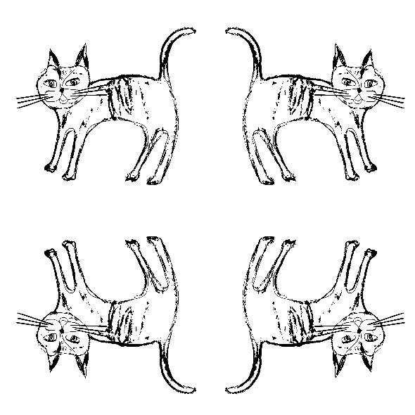 Fabric 9268 | CATS