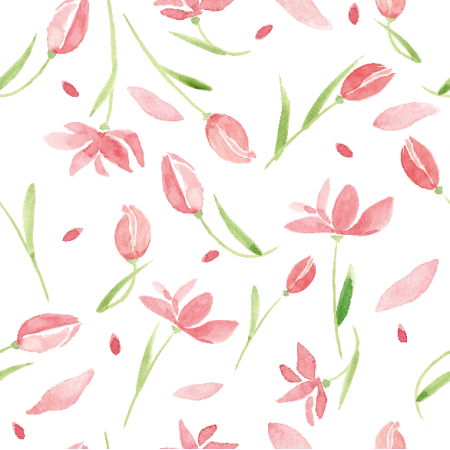 9666   Tulip dream