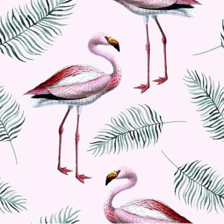 9772 | Flamingo