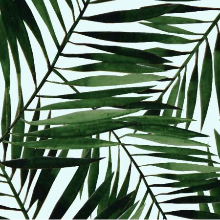 9774 | tropiki-big
