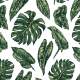 Tkanina 10145 | Tropical leaves