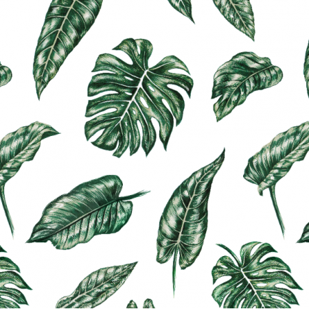10153 | Tropical leaves 2