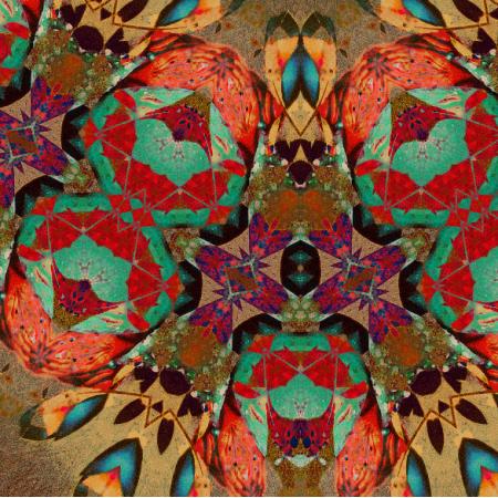 Fabric 10735 | Mariposa