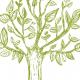 Tkanina 10766 | TREE  pillow