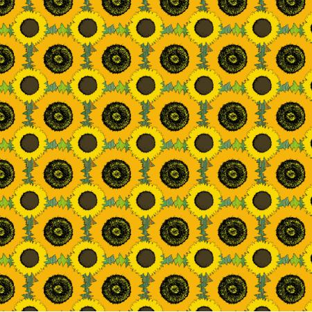 10896 | słoneczniki