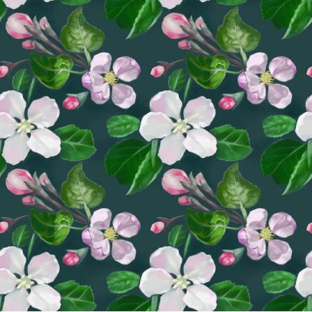 11220 | Kwiaty jabłoni