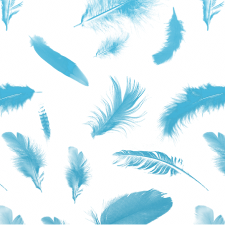Fabric 11230 | blue feathers