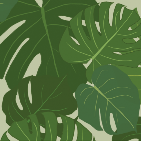 Fabric 11263 | monstera
