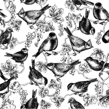 11313 | ptaszki w porzeczkach 1