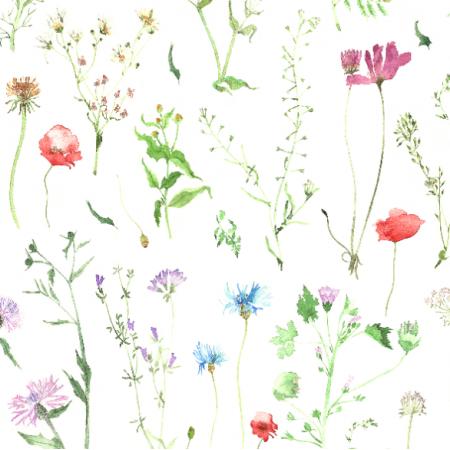 Fabric 11659 | Kwiaty polne - M