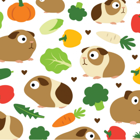 Fabric 11712 | GUINEA PIGS AND THEIR TREATS