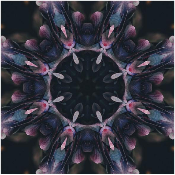 Fabric 11721 | PURPLERAINS0