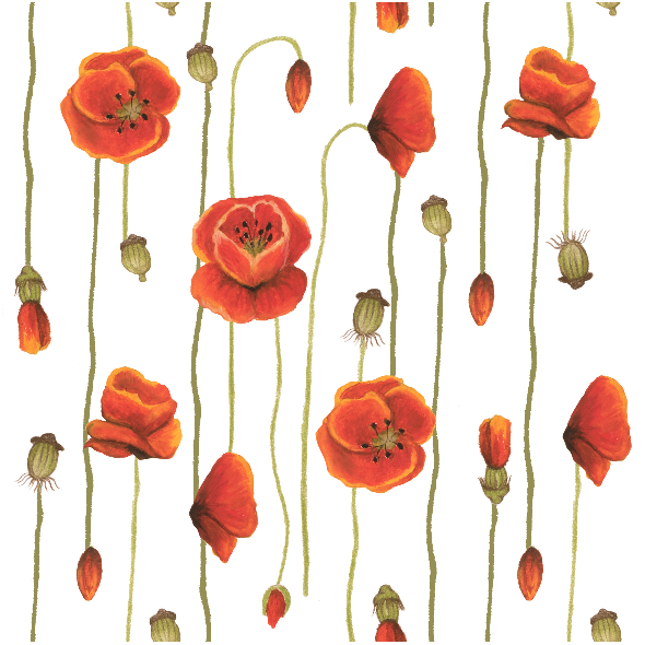 Tkanina 11780 | polish poppy flower