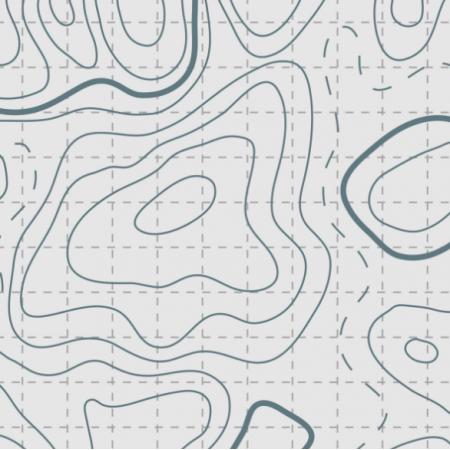 Tkanina 11815 | 004 - Topografia