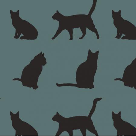 11900 | Koty (koty_4)