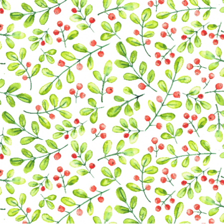 Fabric  | cranberry