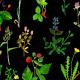 Fabric 12007 | drobna łąka