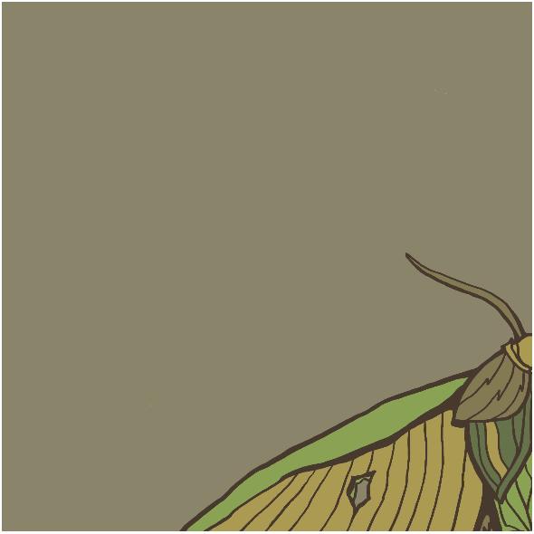 Fabric 12010 | ĆMA (Jesień_6)