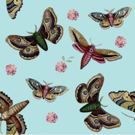 Fabric 12063 | Motyle na niebieskim